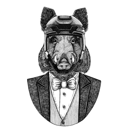 Aper, boar, hog, wild boar Animal wearing jacket with bow-tie and hockey helmet or aviatior helmet. Elegant hockey player. Image for tattoo, t-shirt, emblem, badge, logo, patch