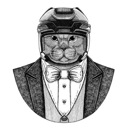 Brithish cat Domestic cat Animal wearing jacket with bow-tie and hockey helmet or aviatior helmet. Elegant hockey player. Image for tattoo, t-shirt, emblem, badge, logo, patch
