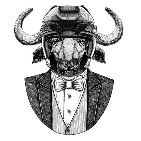 Buffalo, bull, ox Animal wearing jacket with bow-tie and hockey helmet or aviatior helmet. Elegant hockey player. Image for tattoo, t-shirt, emblem, badge, logo, patch Stock Photo