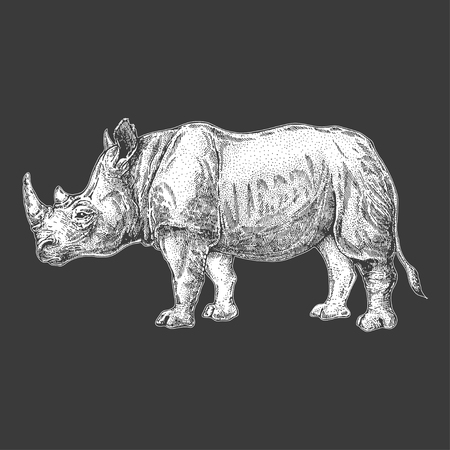 A rhinoceros Hand drawn illustration for tattoo design, emblem, badge, t-shirt print. Engraving of wild animal. Classic vintage style image.
