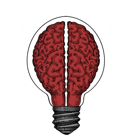 Creative. Imagination. Creativity concept. Bulb and brain. Bright idea. Education and learning. Innovation and motivation.