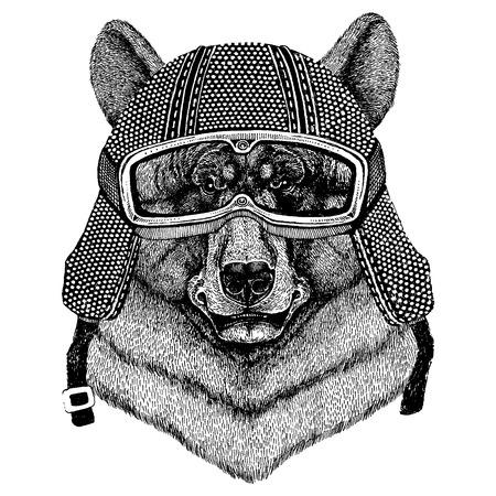 Bear wearing motorcycle helmet. Vintage motorcycle headdress.