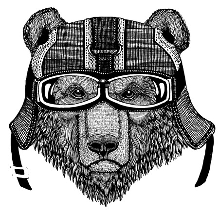 Brown bear Russian bear Hand drawn image Illustration