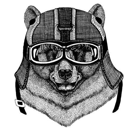 Animal wearing motorcycle helmet.