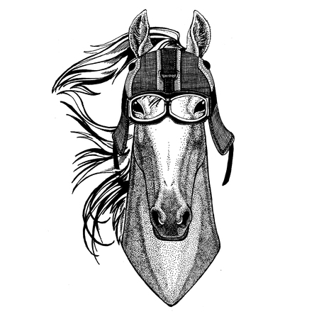 Horse, hoss, knight, steed, courser Animal wearing motorycle helmet. Image for kindergarten children clothing, kids. T-shirt, tattoo, emblem, badge, logo, patch Foto de archivo - 99846106
