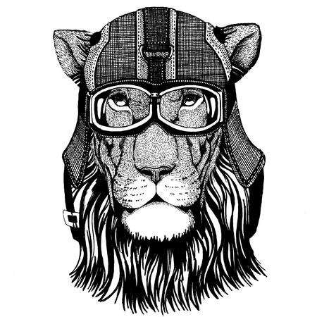 Lion, wild cat Animal wearing motorycle helmet. Image for kindergarten children clothing, kids. T-shirt, tattoo, emblem, badge, logo, patch