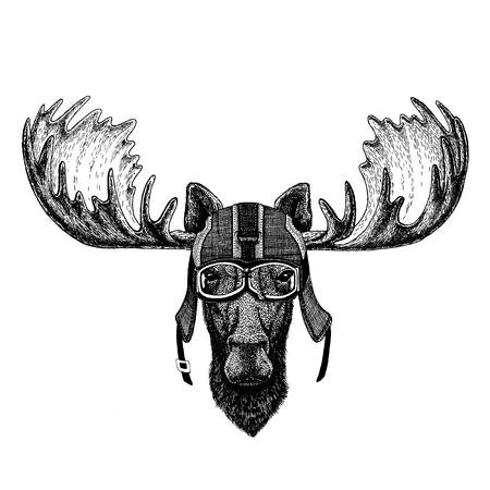 Moose, elk. Hipster animal wearing motorycle helmet. Image for kindergarten children clothing, kids. T-shirt, tattoo, emblem, badge, logo, patch