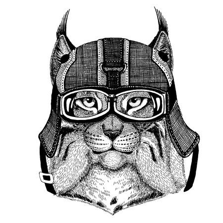 モータークルヘルメットをかぶった動物。幼稚園児服、子供のための画像。Tシャツ、タトゥー、エンブレム、バッジ、ロゴパッチ