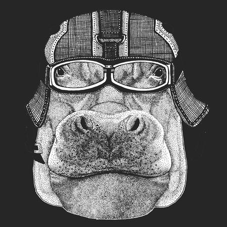 Hippo, Hippopotamus, behemoth, river-horse Crazy biker for t-shirt, emblem, tattoo, patch, logo Wild animal Illustration