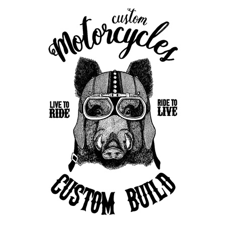 Black bear Hand drawn illustration for tattoo, t-shirt, emblem, badge, logo, patch Illustration