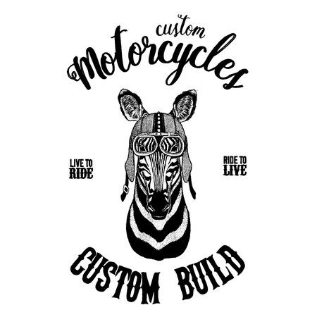 Zebra Horse Biker, motorcycle animal. Hand drawn image for tattoo, emblem, badge, logo, patch, t-shirt Illustration
