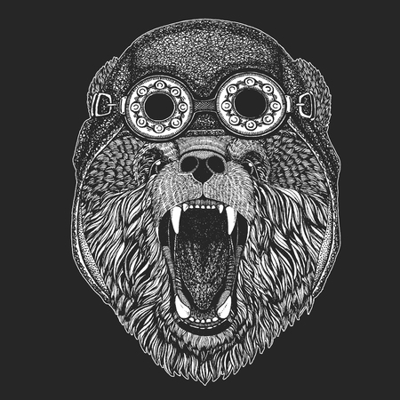 Bear Hand drawn picture for tattoo, t-shirt, emblem, badge, logo patch