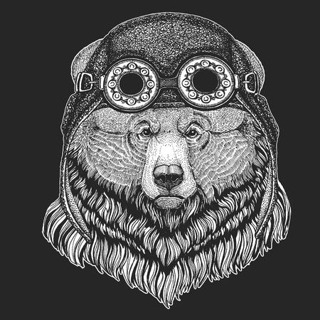 Grizzly bear Big wild bear Hand drawn image for tattoo, t-shirt, emblem, badge, logo, patch Illusztráció