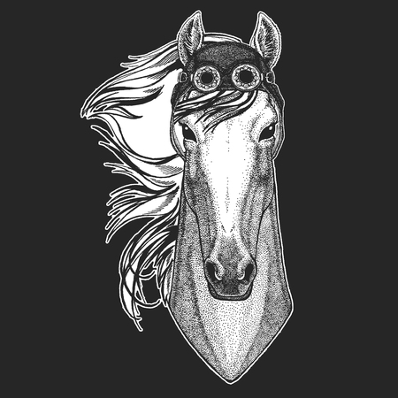 Horse, hoss, knight, steed, courser Hand drawn image for tattoo, emblem, badge logo patch t-shirt