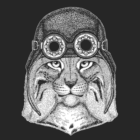 Wild cat Lynx Bobcat Trot Hand drawn image for tattoo, emblem, badge, logo, patch Illustration