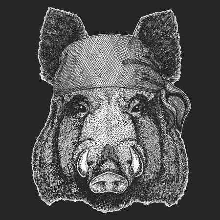 Aper, boar, wild hog Cool pirate, seaman, seawolf, sailor, biker animal for tattoo, t-shirt, emblem, badge, logo, patch. Image with motorcycle bandana