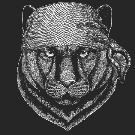 Panther  Cougar Wild cat Cool pirate, seaman, seawolf, sailor, biker animal for tattoo, t-shirt, emblem, badge, logo, patch. Image with motorcycle bandanna Çizim