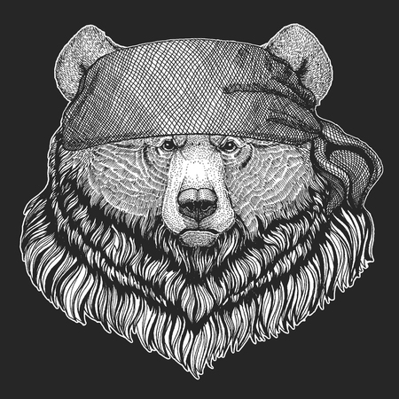 Grizzly bear Big wild bear Hand drawn image Illustration