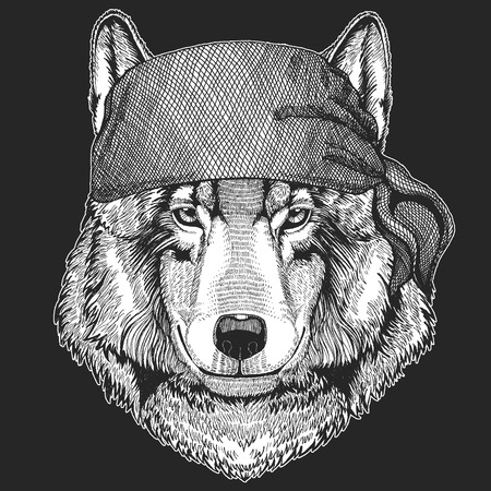 Wolf Dog Cool pirate, seaman, seawolf, sailor, biker animal for tattoo, t-shirt, emblem, badge, logo, patch. Image with motorcycle bandana