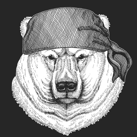 Big white polar bear Cool pirate, seaman, seawolf, sailor, biker animal for tattoo, t-shirt, emblem, badge, logo, patch. Image with motorcycle bandanna
