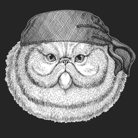 Portrait of fluffy persian cat Cool pirate, seaman, seawolf, sailor, biker animal for tattoo, t-shirt, emblem, badge, logo, patch. Image with motorcycle bandanna Illusztráció
