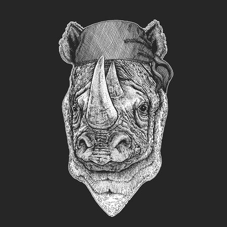 Nashorn cool Pirat auf schwarzem Hintergrund Standard-Bild - 99933526