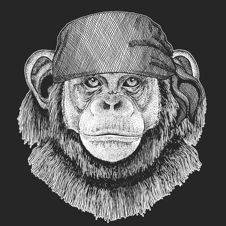 Chimpanzee Monkey Cool pirate Image with  bandanna