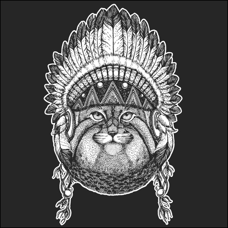 Wild cat Manul Cool animal wearing native american Indian headdress with feathers Boho chic style. Hand drawn image for tattoo, emblem, badge, icon, patch.