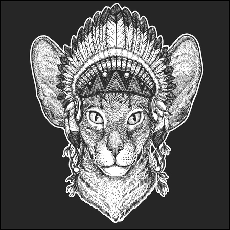 Oriental cat with big ears Cool animal wearing native american Indian headdress with feathers Boho chic style Hand drawn image for tattoo, emblem, badge, icon, patch.
