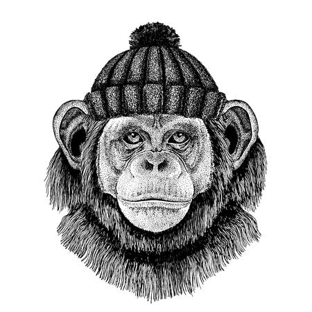 Schimpansenaffe Hand gezeichnete Illustration für Tätowierung, Emblem, Abzeichen, Logo, Aufnäher, T-Shirt Logo