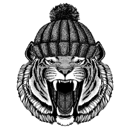Wild tiger animal wearing knitted winter hat. Warm headdress beanie Christmas cap for tattoo, t-shirt, emblem, badge, icon and patch. Reklamní fotografie - 100278215
