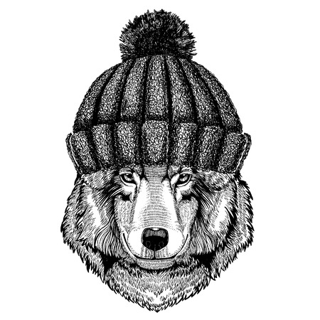 Wolf Dog Hand drawn image for tattoo, emblem, badge, logo, patch