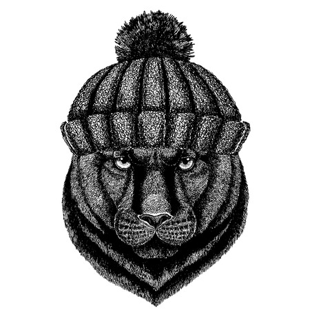 Panther animal wearing knitted winter hat. Warm headdress beanie Christmas cap for tattoo, t-shirt, emblem, badge, icon and patch.