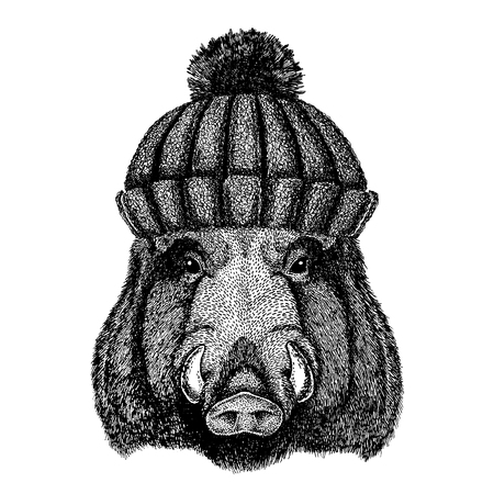 Wild hog, pig, boar, aper Cool animal wearing knitted winter hat. Warm headdress beanie Christmas cap for tattoo, t-shirt, emblem, badge, logo, patch Illustration