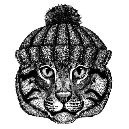 Wild cat Fishing cat Cool animal wearing knitted winter hat. Warm headdress beanie Christmas cap for tattoo, t-shirt, emblem, badge, logo, patch