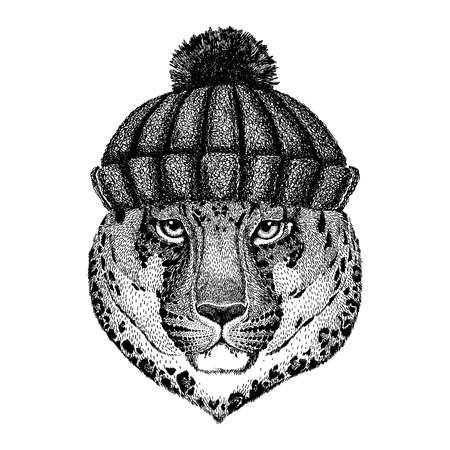 Wild cat Leopard Cat-o-mountain Panther Cool animal wearing knitted winter hat. Warm headdress beanie Christmas cap for tattoo, t-shirt, emblem, badge, logo, patch