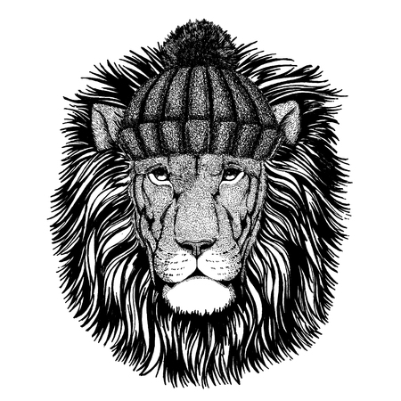 Wild lion Cool animal wearing knitted winter hat. Warm headdress beanie Christmas cap for tattoo, t-shirt, emblem, badge, logo, patch