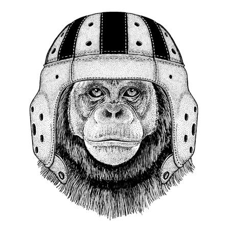 Cool animal wearing rugby helmet Chimpanzee Monkey Hand drawn illustration for tattoo, emblem, badge, logo, patch, t-shirt