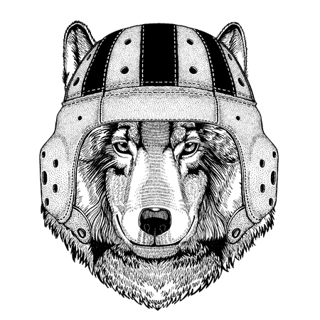 Cool animal wearing rugby helmet, Extreme sport Wolf Dog Wild animal in hand drawn illustration.