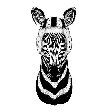 Cool animal wearing rugby helmet Extreme sport game Zebra Horse Hand drawn illustration for tattoo, emblem, badge, logo, patch Stock Photo