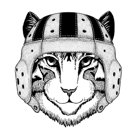 Cool animal wearing rugby helmet Extreme sport game Image of domestic cat Hand drawn illustration for tattoo, emblem, badge, logo, patch, t-shirt