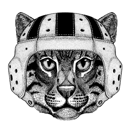Cool wild cat animal wearing rugby helmet hand drawn illustration for tattoo or emblem design.