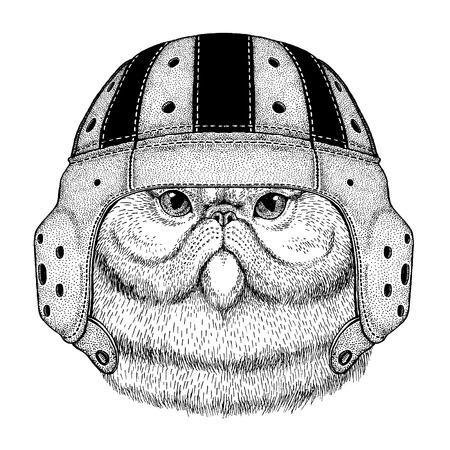 Cool wild persian cat animal wearing rugby helmet hand drawn illustration for tattoo or emblem design.