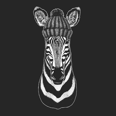 Cute animal wearing knitted winter hat Zebra Horse Hand drawn illustration for tattoo, emblem, badge, logo, patch