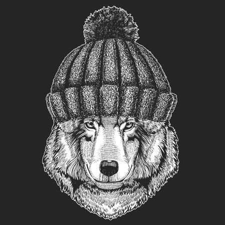 Cute animal wearing knitted winter hat Wolf Dog Hand drawn image for tattoo, emblem, badge, logo, patch Illustration