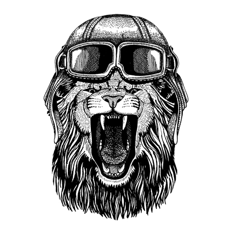 Animal wearing aviator helmet with glasses. Vector picture. Hand drawn image of lion for tattoo, t-shirt, emblem, badge, logo, patch