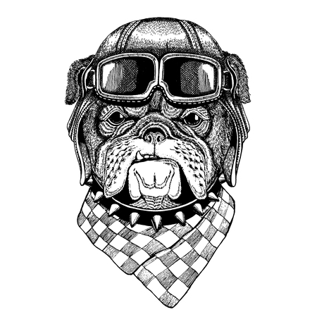 Animal wearing aviator helmet with glasses. Vector picture. Bulldog, dog. Hand drawn vintage image for t-shirt, tattoo, emblem, badge, logo, patch Illustration