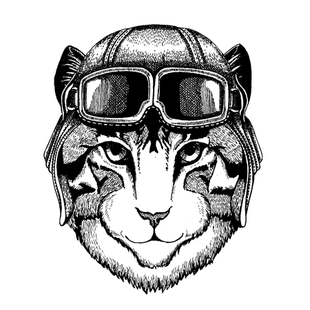 Animal wearing aviator helmet with glasses. Vector picture. Image of domestic cat Hand drawn illustration for tattoo, emblem, badge, logo, patch, t-shirt