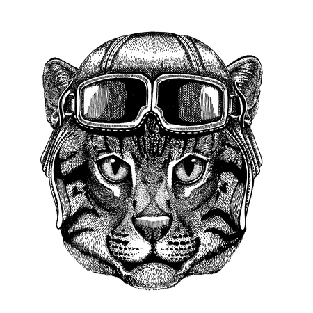 Animal wearing aviator helmet with glasses. Vector picture. Wild cat Fishing cat Hand drawn image for tattoo, emblem, badge, logo, patch
