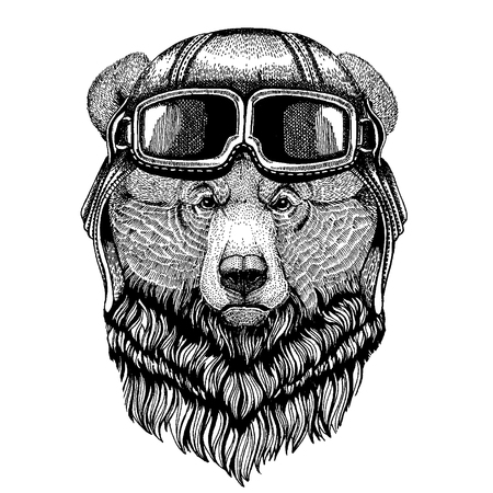 Animal wearing aviator helmet with glasses. Vector picture. Grizzly bear Big wild bear Hand drawn image for tattoo, t-shirt, emblem, badge, logo, patch Illustration